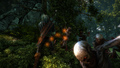 W2 SS Geralt 32.png