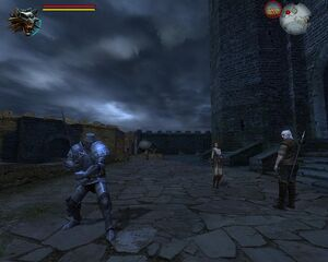 Witcher 2009-09-29 13-44-40-98.jpg