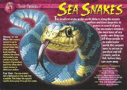 Sea Snake front.jpg