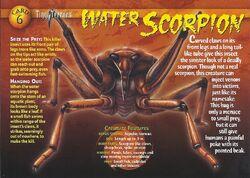 Water Scorpion front.jpg