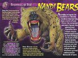 Nandi Bears