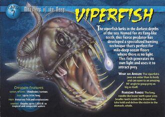 Viperfish front
