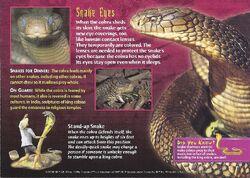 King Cobra back.jpg
