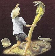 King cobra 1.jpg