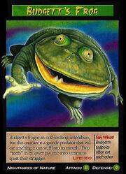 Budgett's Frog.jpg