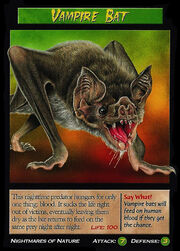 Vampire Bat.jpg
