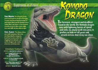 Komodo Dragon front