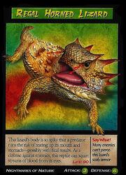 Regal Horned Lizard.jpg