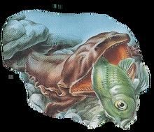 Giant Salamander Back Small.png