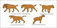 Smilodon, Megantereon, Eusmilus and Homotherium