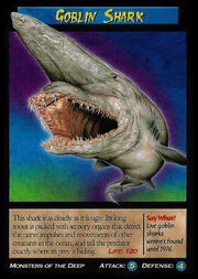 Goblin Shark.jpg