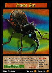 Chagas Bug.jpg