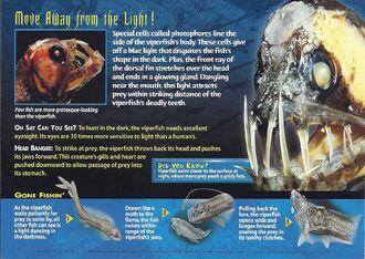 Viperfish back