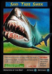 Sand Tiger Shark.jpg
