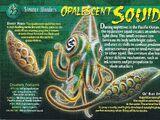 Opalescent Squid