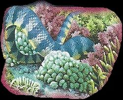 Sea Snake 2.jpg