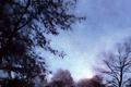 Nuit claire (Jasna noc)