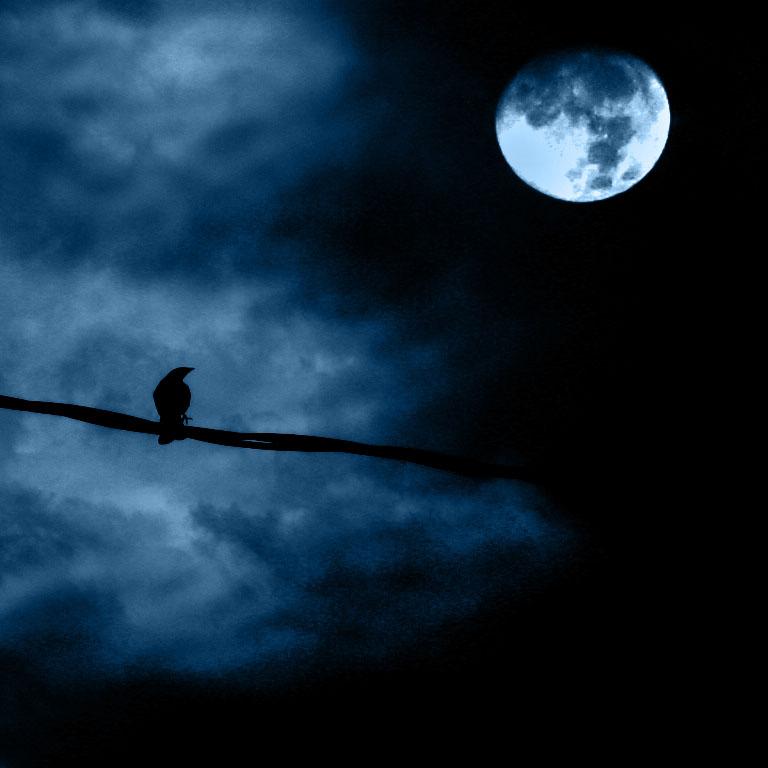 Księżyc wstaje