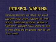 PurpleStoneInterpolWarningScreen1