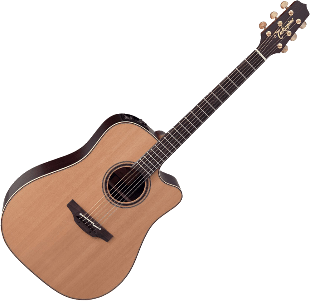 "Takamine DN15C (""Starry Acoustic Guitar"")"