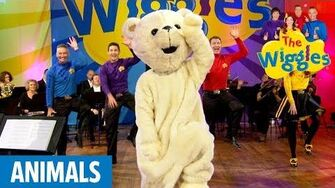 The_Wiggles_Here_Comes_a_Bear