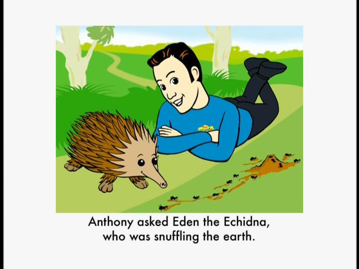 Eden the Echidna