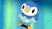 Dawn Piplup.png