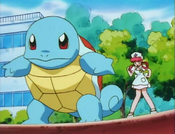 PLEEI Squirtle.png