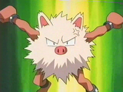Butch's Primeape.png