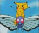 PikachuRidesButterfree.jpg