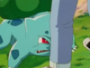 IL010- Bulbasaur and the Hidden Village 36.png
