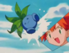 IL010- Bulbasaur and the Hidden Village 08.png