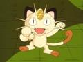 Meowth Season 1.png