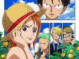One Piece, épisode de Nami : Les Larmes de la navigatrice, le lien des compagnons
