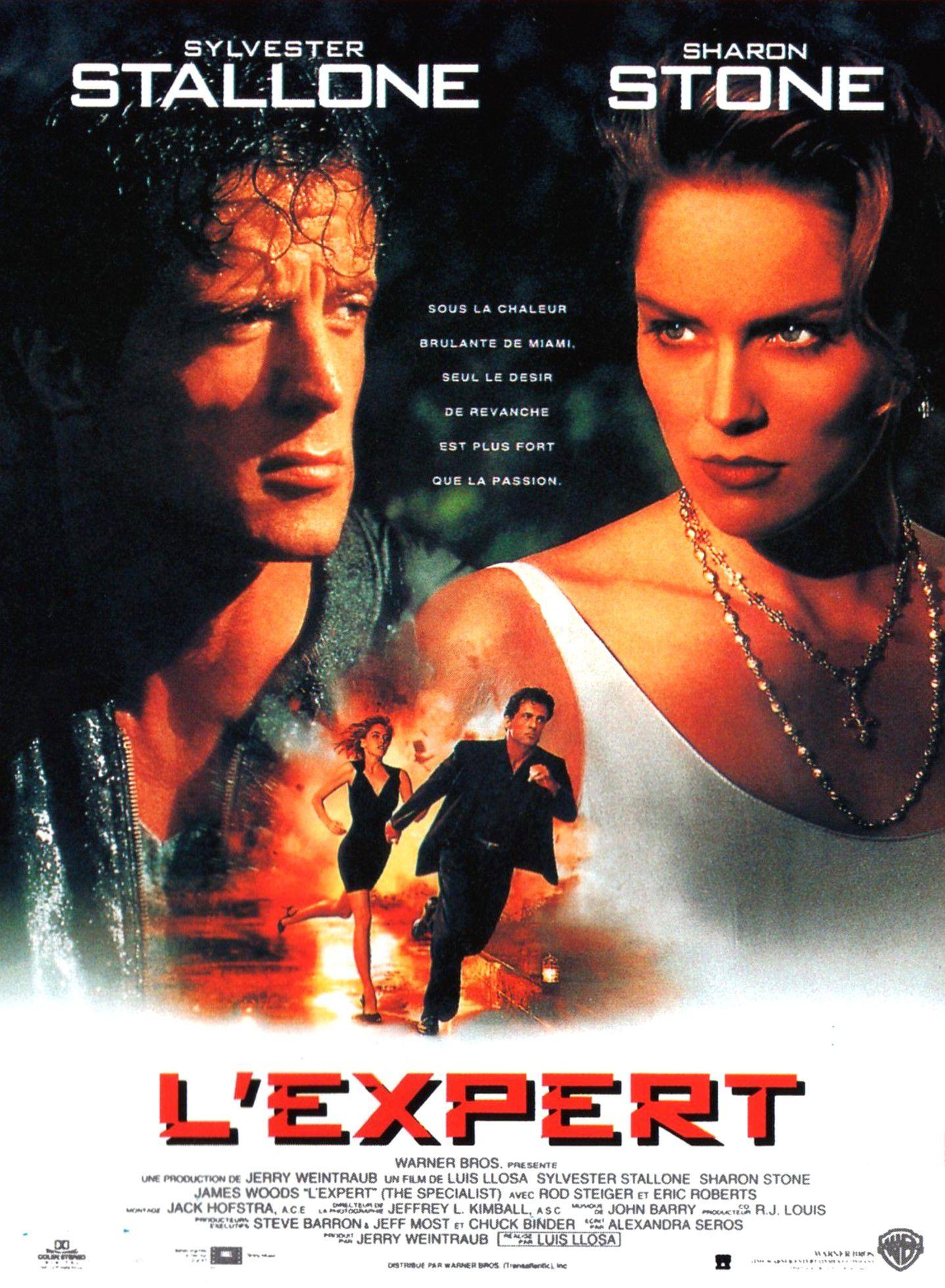 L'Expert (film)