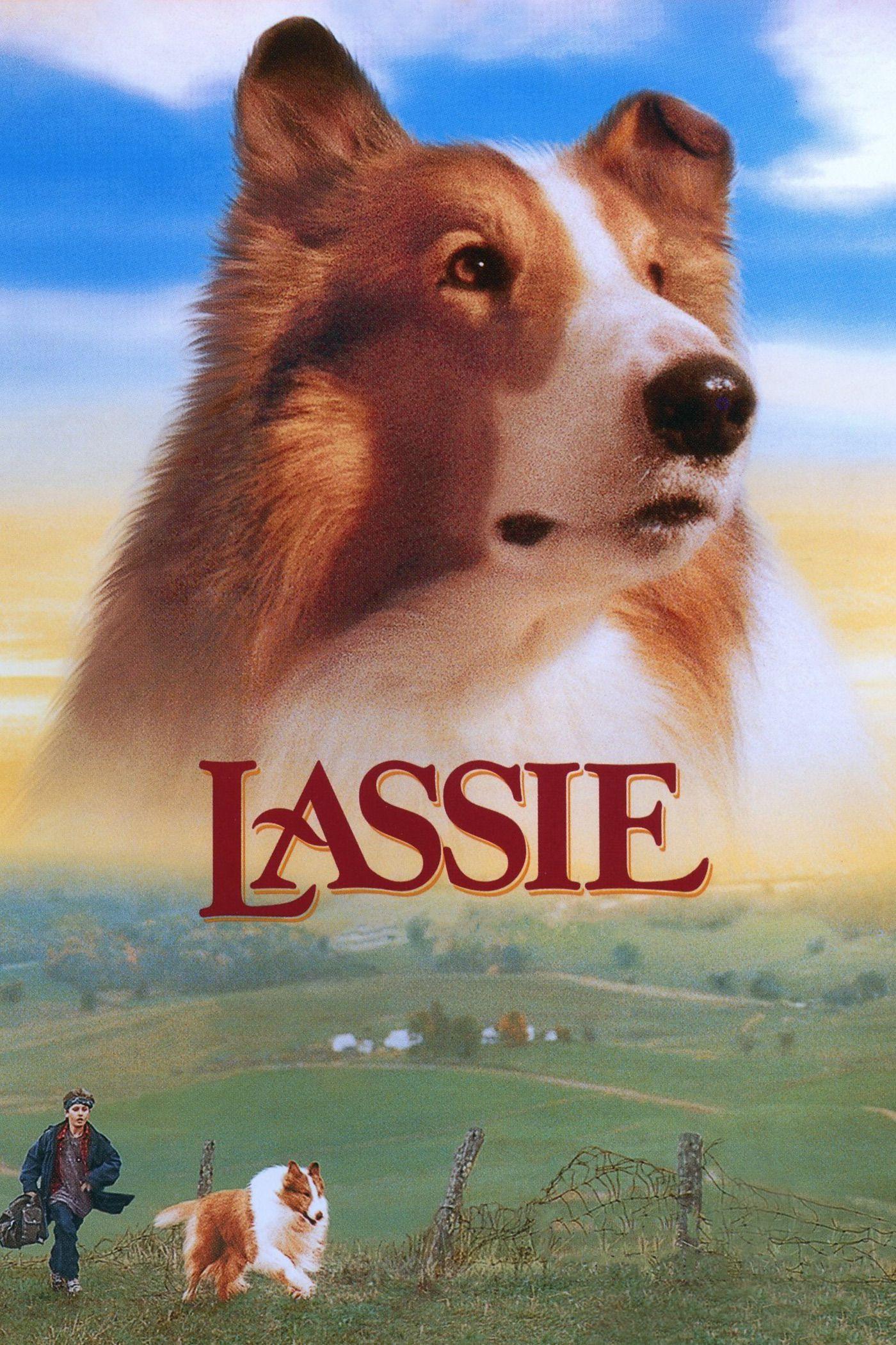 Lassie : Des amis pour la vie