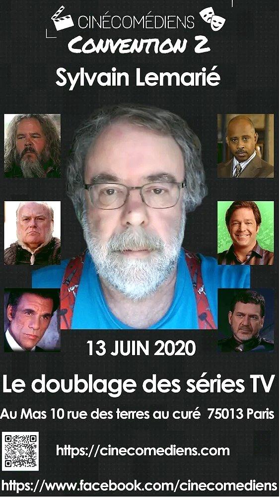 Convention Doublage 2 (2020) - Sylvain Lemarié.jpg