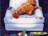 Garfield (film)