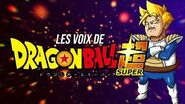 INTHEPANDA - Dragon Ball Super Broly