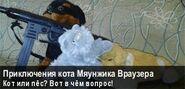 Приключения Мяунжика Вики (баннер февраль-март 2016)
