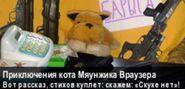 Приключения Кота Мяунжика Ваузера