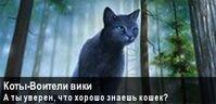 Баннер Коты-Воители Вики1