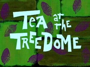 Tea at the Treedome.jpg
