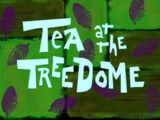 Chá em Terra Firme