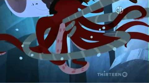 Octopus Wildkratticus 2