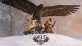 Wild 2014 08-12-14 010.jpg