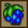 WA3 Potion Berry