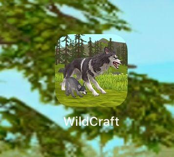 Wiki WildCraft