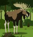 Moose AN