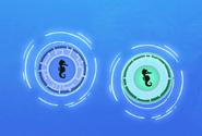Seahorse-Disks.WK